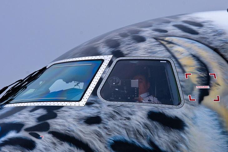 Кабина Embraer 190-E2