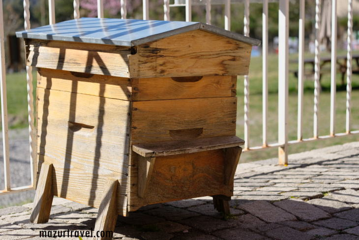 Чентр пчеловодства