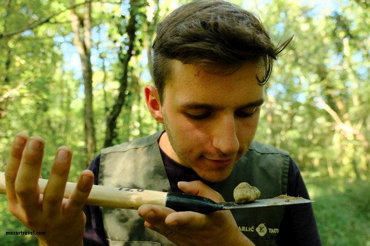 Охота на трюфели