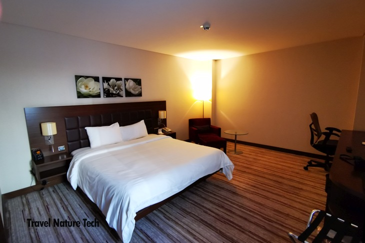 Отель Hilton Garden Inn Sanliurfa