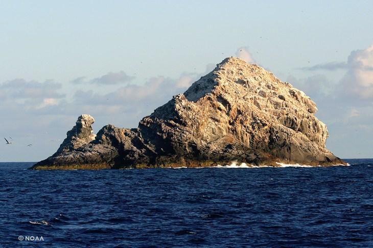 Самый большой вулкан найден в Тихом океане