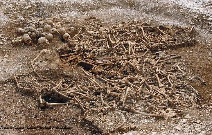 Захоронение викингов
