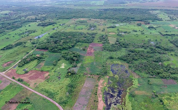 Аэрофотосъемка храма Aguada Fenix