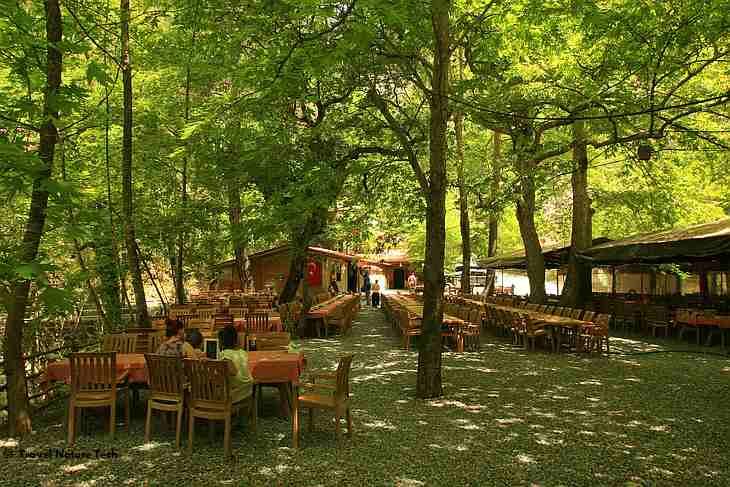 Площадка для отдыха в Сападере